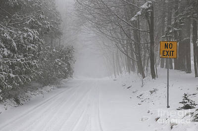 Winter Road During Snow Storm Poster