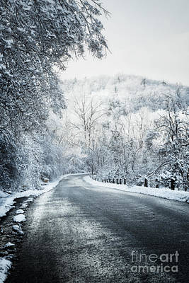Winter Road In Forest Poster