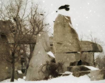 Winter Rocks Poster