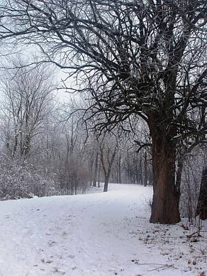 Winter Serenity Poster by Teresa Schomig