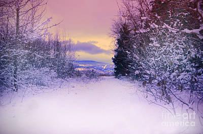 Winter Skies Poster