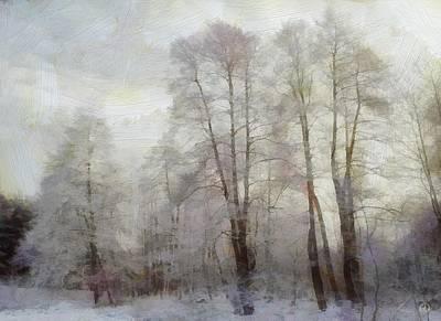 Winter Softness Poster by Gun Legler