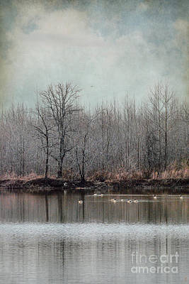 Winter Solitude Poster by Jai Johnson