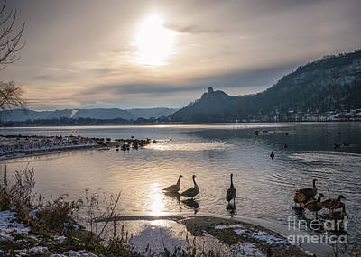 Winter Sugarloaf With Geese Poster