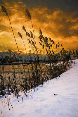 Winter Sunrise Through The Reeds - Artistic Poster