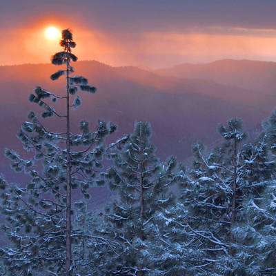 Winter Sunset - Kings Canyon Poster by Stephen  Vecchiotti