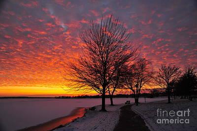 Winter Sunset Poster by Terri Gostola