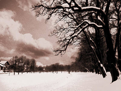 Poster featuring the photograph Winter Tale by Nina Ficur Feenan
