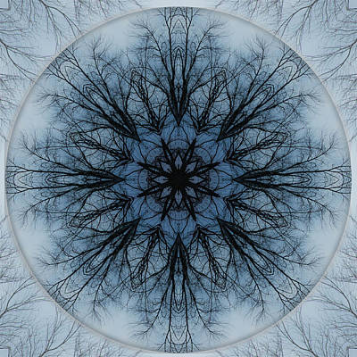 Winter Tree Mandala 2 Poster