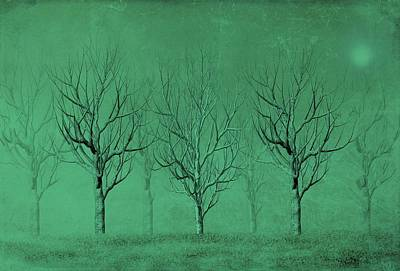 Winter Trees In The Mist Poster by David Dehner
