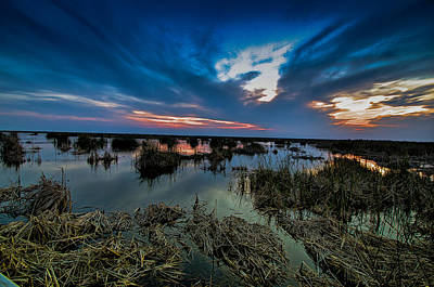 Winter Twilight At Anahuac Wildlife Refuge  Poster