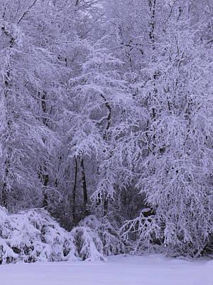 Winter Wonderland 1 Poster