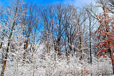 Winter Wonderland Poster by Frozen in Time Fine Art Photography