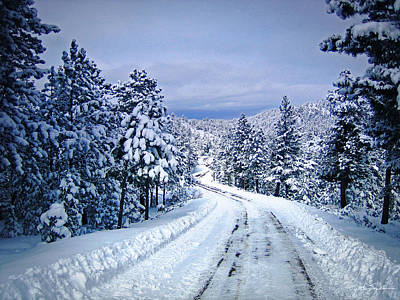 Winter Woodland Photo -country Roads Take Me Home -mountain Landscape -nature Poster