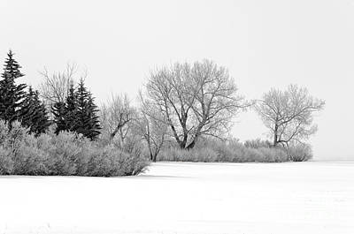 Winter's Cloak Poster