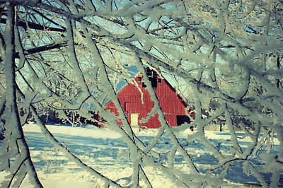 Wintery Red Barn Poster by Julie Hamilton
