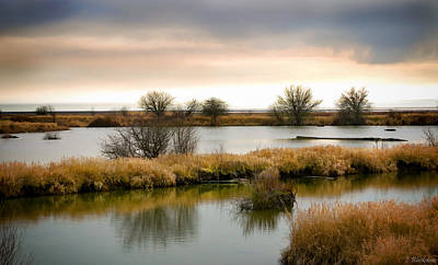 Poster featuring the photograph Wintery Wetlands by Jordan Blackstone