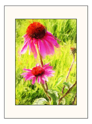 Wisconsin Cone Flowers Poster