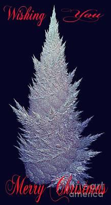 Wishing You Merry Christmas Poster by Gail Matthews