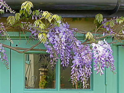 Wisteria Cottage Window Poster by Gill Billington