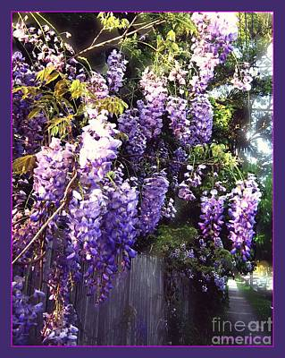 Poster featuring the photograph Wisteria Dreaming by Leanne Seymour