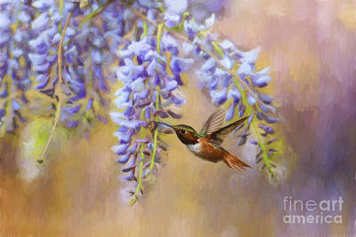 Wisteria Elegance Poster by Darren Fisher