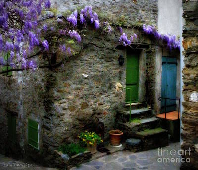 Wisteria On Stone House Poster