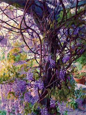 Wisteria Shade And Sun Poster
