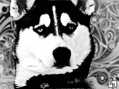 Wolf Dog Black  White B W Poster