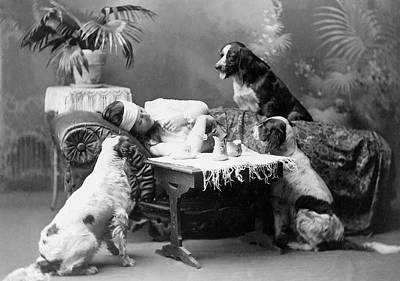 Woman And Dogs, C1903 Poster