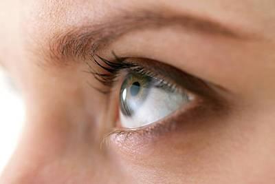 Woman's Eye Poster by Daniel Sambraus, Thomas Luddington
