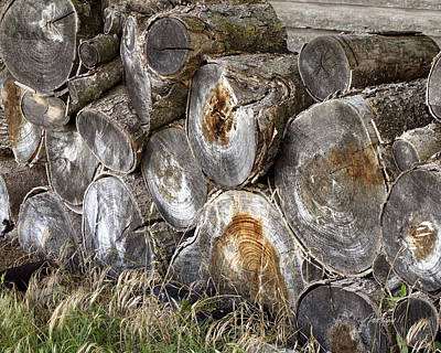 Wood Pile -  Fine Art  Photograph Poster by Ann Powell