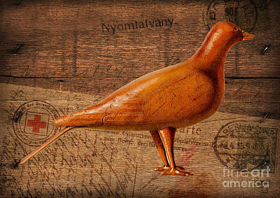 Wood Postal Pigeon Poster