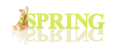 Wooden Spring Letters Poster