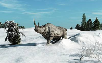 Woolly Rhinoceros Poster by Walter Myers