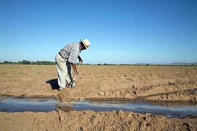Worker Digging Irrigation Channels Poster