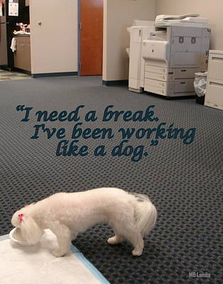 Working Dog Poster by Mary Beth Landis