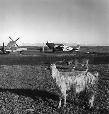 World War II: Airfield Poster