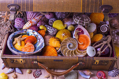 Worn Suitcase Full Of Sea Shells Poster