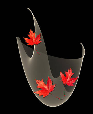 Woven Maple Leaves Poster