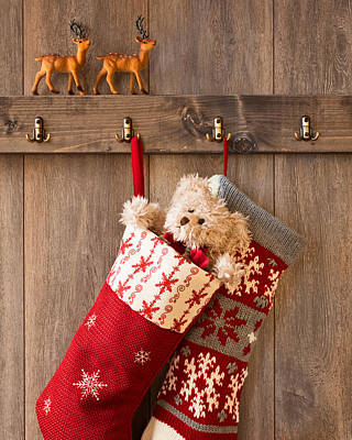 Xmas Stockings Poster by Amanda Elwell