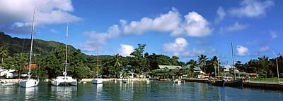 Yachts And Small Fishing Boats Poster