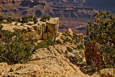 Poster featuring the photograph Yaki Point 3 The Grand Canyon by Bob and Nadine Johnston
