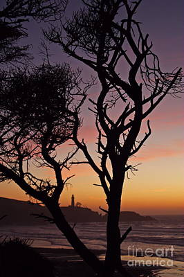 Yaquina Head Dusk Sixty Poster by Donald Sewell