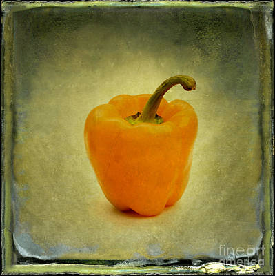 Yellow Bell Peper Poster