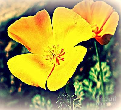 Yellow California Poppies Poster by Michaline  Bak