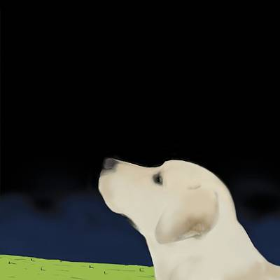 Yellow Dog Profile Poster