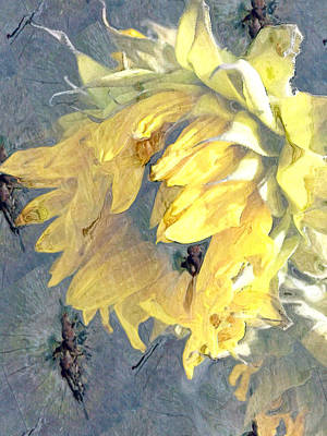 Yellow Fading Flower Poster