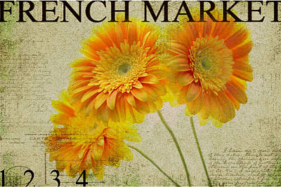Yellow Gerber Poster