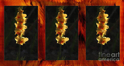 Yellow Gladiolus Triptych Oil Painting. Poster